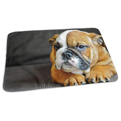 Voxpkrs Premium Baby Diaper Changing Pads for Infant Kneeling English Bulldog Portable Urine Pads Play Mat Great for Travel/Stroller/Bed/Car