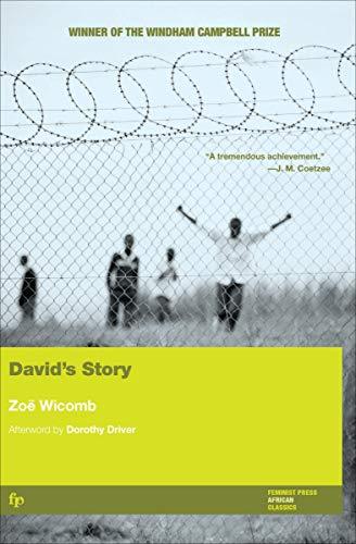David's Story por Zoë Wicomb