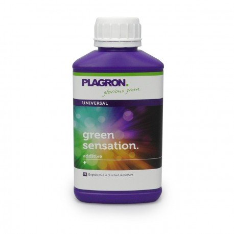 PLAGRON - PLAGRON GREENSENSATION - 250ML