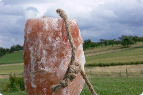 4x HIMALAYA Leckstein XL 5 - 5,5 KG ! Salzleckstein Mineralleckstein von Biova !