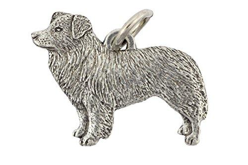 border-collie-perro-animal-collar