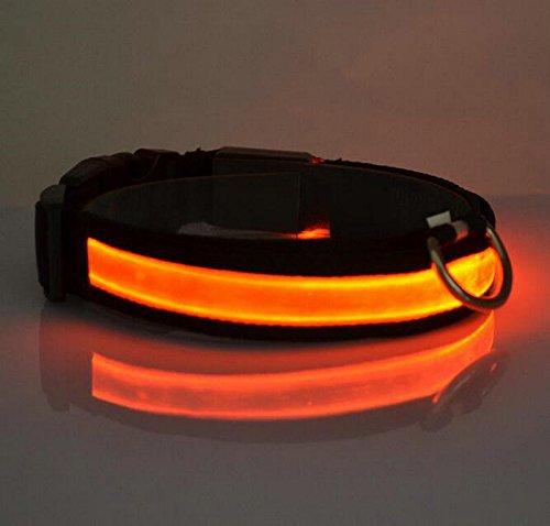 LED Halsband Leuchthalsband S/M/L/XL Hundehalsband Sicherheitshalsband Nylon Da.Wa - 4
