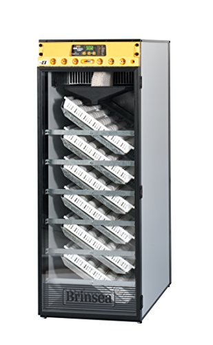 Incubadora Brinsea 580 Advance