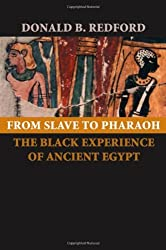 From Slave to Pharaoh: The Black Experience of Ancient Egypt by Donald B. Redford (2006-09-06)