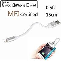 LP 15cm Kurz Lightning Kabel (Apple MFi zertifiziert) Daten Sync und Ladung Ladekabel für iPhone iPad iPod iOS High Lebensdauer Verstärkt Schnelles Laden USB Handy Akku Datenkabel - Silber