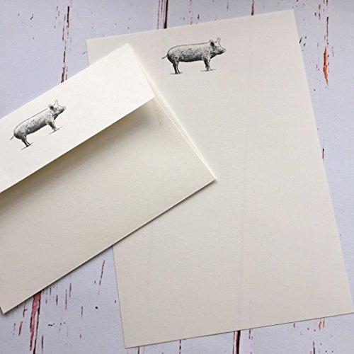 Stelzen (Gattung) Designs Schreibpapier Geschenk-Set mit Ein Schwein Illustration in a Lovely schwarz Box mit Band (wählen Sie 12,18oder 36Blatt hochwertiges Papier mit passender Umschläge) Ivory (Cream)