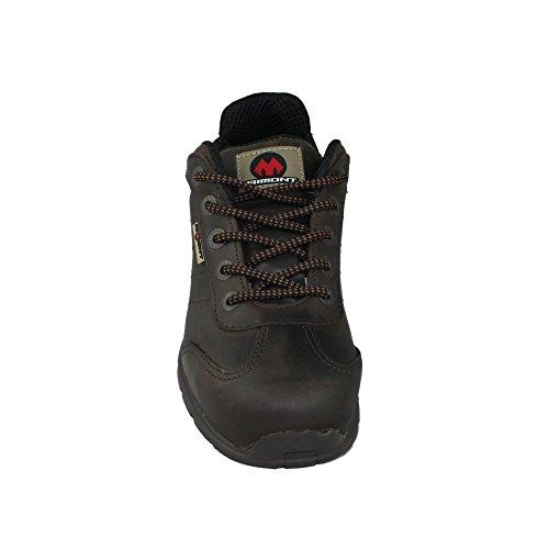 Aimont s3 sRC chaussures de sécurité de style chaussures de trekking berufsschuhe businessschuhe plat marron Marron - Marron
