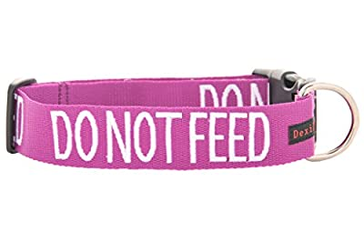 DO NOT FEED (Dog is on a Diet/Has Food Allergies) Purple Colour Coded S-M L-XL Dog Collars PREVENTS Accidents By Warning Others Of Your Dog In Advance by Friendly Dog Collars