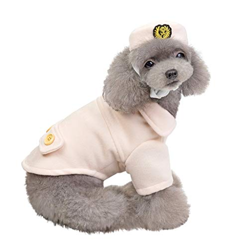 Fenverk Hundekleidung Für Kleine Hundepullover Hund Kleidung Herbst Winter Haustier Katze Hundebekleidung Sweater Warm Kapuzenjacke Hundemantel(A - Schrodingers Katze Kostüm