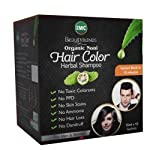 IMC Hair Colour Shampoo Enriched with Noni Ext, Aloevera, Olive Oil and Glyserin