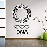 Pegatinas de pared de ADN Genealogía Biología Escuela de Química Adorno de Pared Ciencia Vinilo Tatuajes de Pared Etiqueta de la Decoración Del Hogar Sala de estar 42x68cm