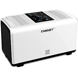 SUMGOTT Purificador de Aire de Filtro HEPA Ionizador de Aire para Personas Alérgicas Filtro de Aire con Poco Ruido para Hogar Casas Oficinas Mascotas Fumadores Cocina