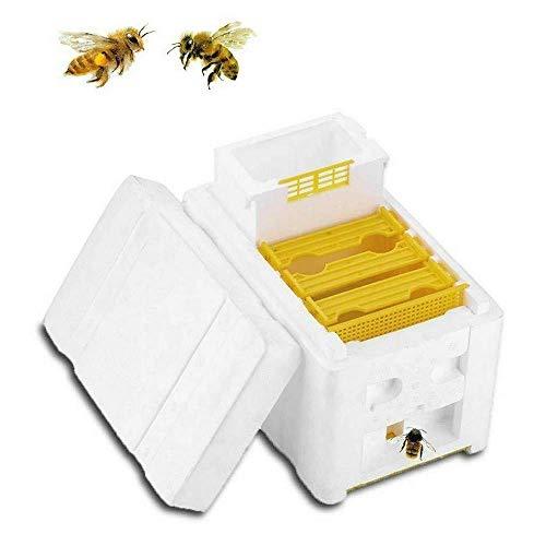Colmena de cosecha - Caja de polinización de abejas, herramienta de cosecha...