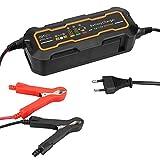 Mbuynow Auto Akku Ladegerät Automatisch Elektronik Autobatterie Ladegerät 12V/24V mit Hintergrundbeleuchtung LCD Anzeige für Blei-Säure Batterie 12V & 6V, Autos, Motorrads