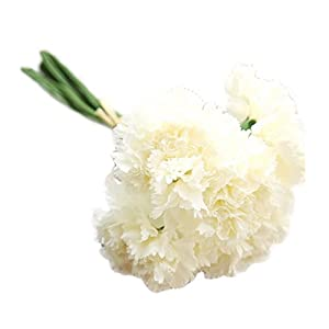 Outflower 6 PCS Artificial Falso Clavel de Flores Decoraciones para el Hogar Flor de la Boda Regalo Creativo del día de la Madre(Blanco)