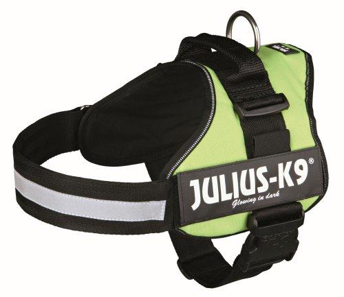 Julius-K9, K9-Powerharness, Kiwi 1