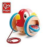 Hape E0360 Toy, Multicoloured