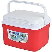 13L Mini frigorificos portátil Caja de Aislamiento de Coche Al Aire Libre Coche Organizador Caja de Preservación de Medicamentos Hogar