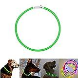 Carrie LED Leuchthalsband Hunde Halsband USB wiederaufladbar - Längenverstellbarer Haustier Sicherheit Kragen für Hunde und Katzen