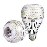 Sansi Ampoule LED Dimmable Ampoule Edison 4000 Lumen 27W (250W Incandescence équivalent), Ampoules Basse Consommation LED 5000K Lumière du Jour