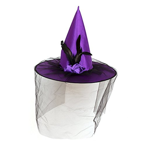 Westlink Halloween Parties Luxury Witch Hat with Veil and Feather Witch Hexenhüte