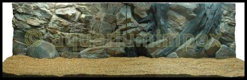 3D Aquarienrückwand 200x60 Root 2Tlg
