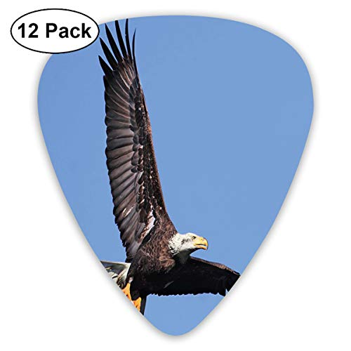 Guitar Picks12pcs Plectrum (0.46mm-0.96mm), Hunter Bird Carrying A Fish To The Nest In Open Blue Sky Predator Cycle Of Life,For Your Guitar or Ukulele
