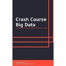 Crash Course Big Data (English Edition)
