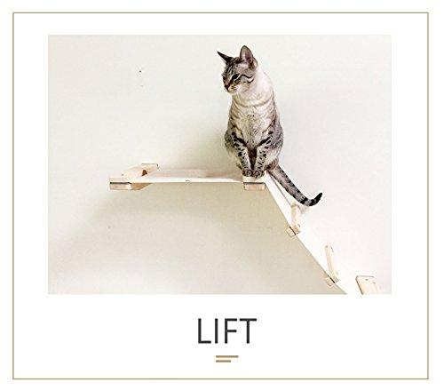 Catastrophicreations mensole da parete per gatti artigianali, colore castagno inglese/naturale, taglia unica