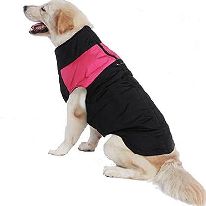 Treat Me Winter Dog Coat Warm Pet Jacket Raincoat of Nylon Fabric Cotton Filler Waterproof Protective Adjustable 1