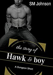 The Story of Hawk and Boy: Roman's Dungeon short story: A BDSM Gay Romance short story (Dungeon series) (English Edition)