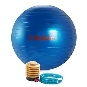 Balala GymnastikballFitnessball Yogaball 65cm inklusive Ballpumpe Maximalbelastbarkeit bis 200kg