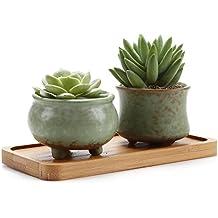 Rachel's Serie de Primavera Suculento Cactus Macetas Jardineros de Macetas Contenedores Cajas de Ventana Con Bandeja de Bambú NO.2 & NO.3, Paquete de 2