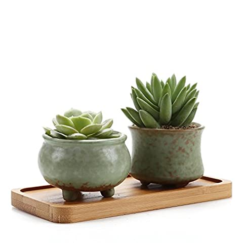 Rachel's Spring Serial NO.2 & NO.3 Sucuulent Cactus Plant Pots Flower Pots Planters Containers Window Boxes With Bamboo Tray Green Set of