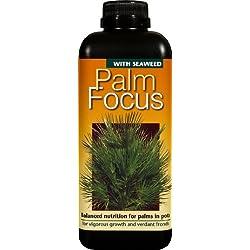 Growth Technology Palm Focus Engrais pour Palmier 1 l Noir