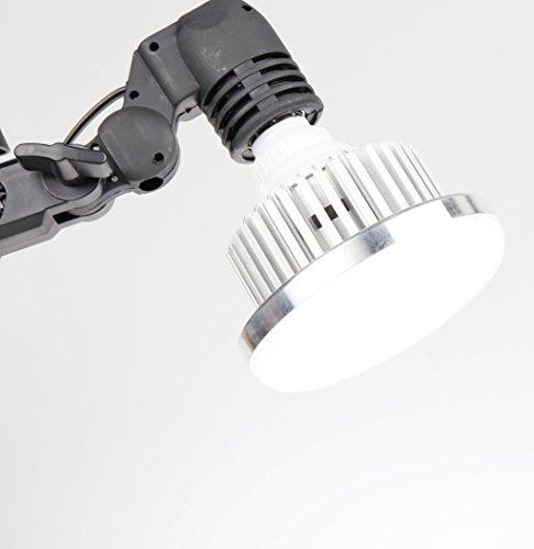Professionelle Fotografie LED E27Leuchtmittel (65W, 5.500K), flimmerfrei, Softbox, für Foto Studio und Online Celebrity, für Portrait und Artikel zu Beleuchtung - 3