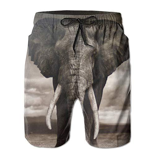 Feng Huang Elefantes africanos Tusk Corte de Encaje de Secado rápido Pantalones...