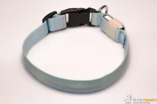 LED Leuchthalsband Basic 1 per USB aufladbar, Größe M, Blau