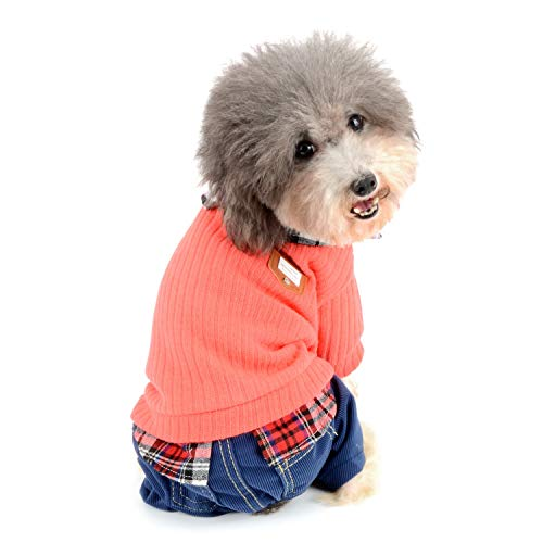 Zunea - Traje de chándal para Perro, Ropa para Perros pequeños, niñas,...