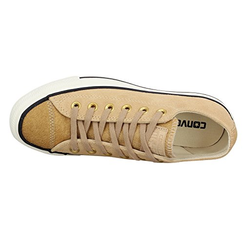 Converse Ctas Hi Light Fawn/Black, Montantes Mixte Adulte Camel