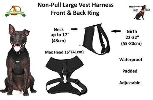 Dexil Elite Range Hundegeschirr, gepolstert, wasserfest, verstellbar, Ring hinten und vorne (zum Vermeiden von Ziehen) - 3