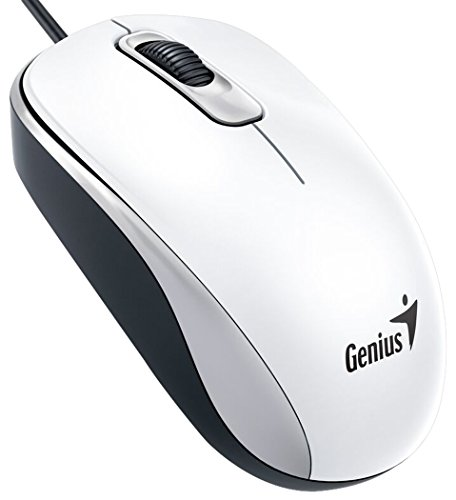 Genius DX-110 USB Óptico 1000DPI Ambidextro Blanco