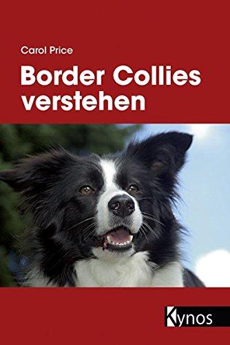border-collies-verstehen