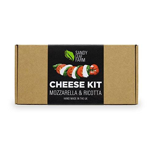 Mozzarella and Ricotta Cheese Kit Test