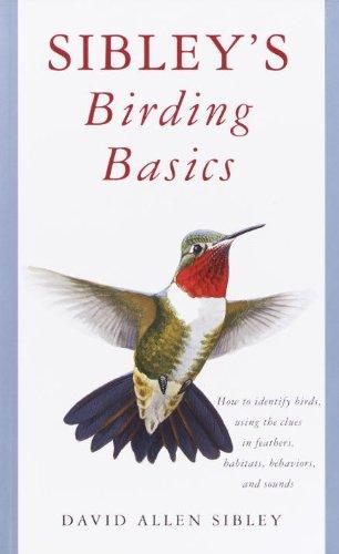 Sibley's Birding Basics (English Edition)