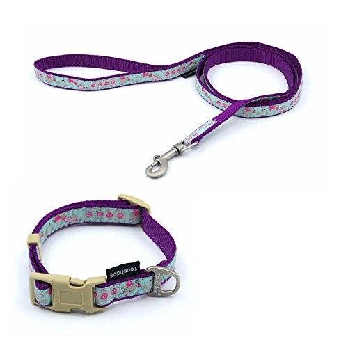 Touchdog Hundleine mit Halsband und Clip, Hundegeschirr… | 00723800884839