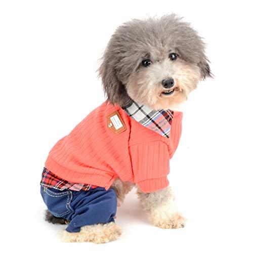 Ranphy Kleiner Hund Pullover mit Plaid Shirt Kragen, Warm Hund Outfits, Student Stil Pet Jumper mit Hose, Puppy Strickwaren Bekleidung Mädchen Jungen Für Herbst Winter