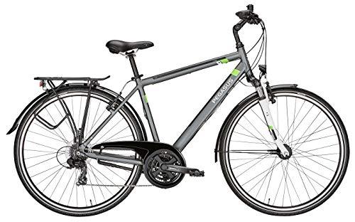 Herren Fahrrad 28 Zoll grau - Pegasus Piazza Citybike - Shimano Kettenschaltung, STVZO Beleuchtung