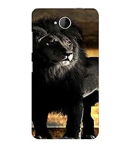 PrintVisa Black Lion Animal Design 3D Hard Polycarbonate Designer Back Case Cover for Nokia Lumia 650