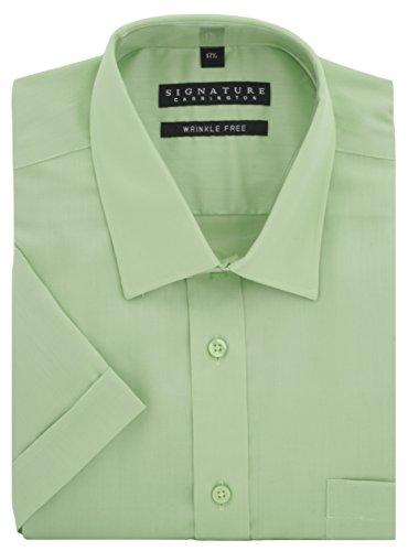 Signature -  Camicia classiche  - Basic - Classico  - Maniche corte  - Uomo Verde